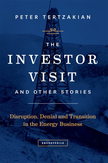 Front cover of The Investor Visit and Other Stories by Peter Tertzakian